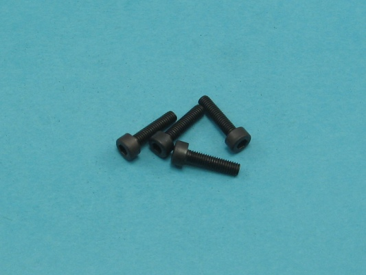 Šroub imbus M2,5x12 (4ks)